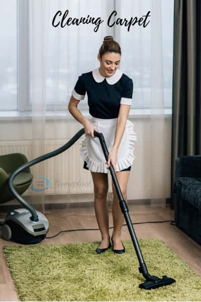 best wet and dry vacuum cleaner to clean carpet