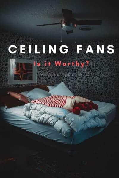 is ceiling fan worthy?