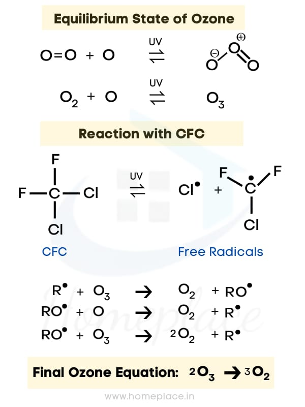 CFC and Ozone reaction