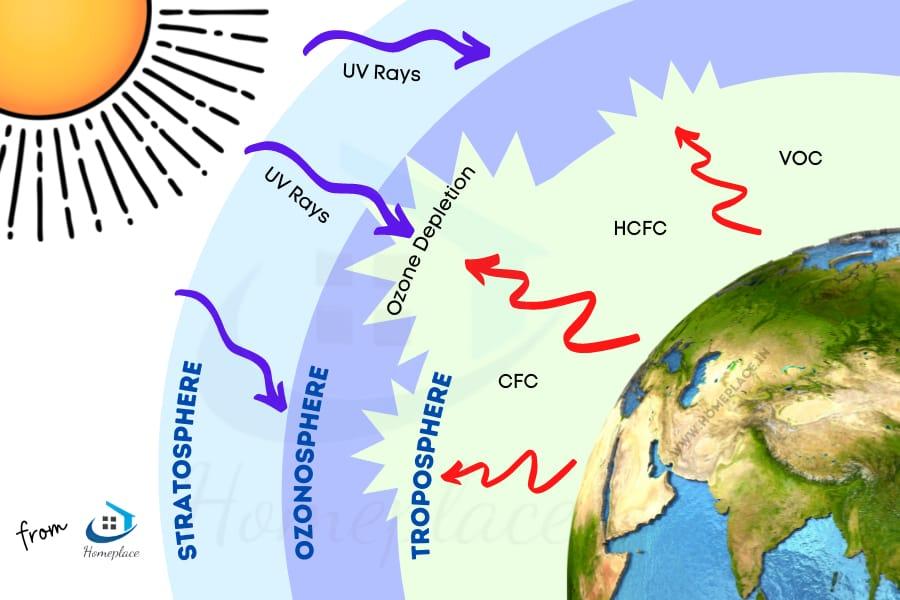 how cfc depletes ozone layer